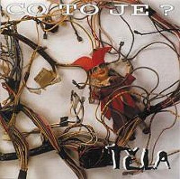 cd-reedice-co-to-je-_3_96.jpg